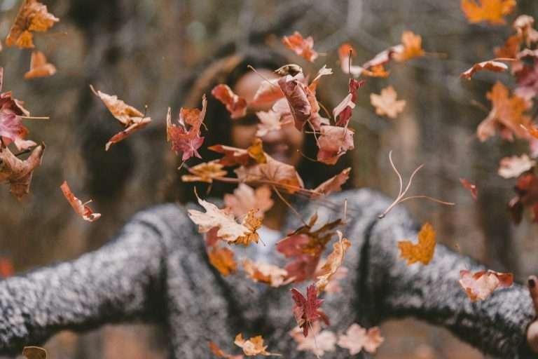 <h6>Autumn</h6><p>Lorem ipsum dolor sit amet, consectetur adipiscing elit.</p>